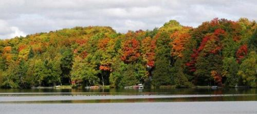 Changing colors of the foilage at Echo Lake in Aroostook State Park near Presque Isle, Maine. Photo by Kelly McInnis.